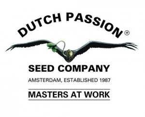 Dutch Passion logo CBD-rich