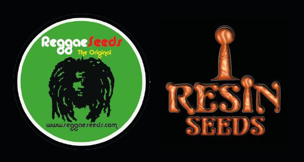 Reggae y Resin Seeds